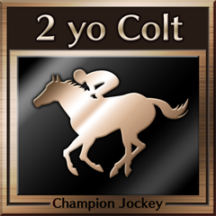 File:Champion Jockey Trophy 20.png