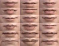 File:Male Lips (DWN).png