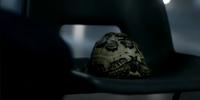 Permanent Tortoise Mimicry