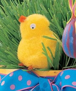 Pompom-Chicks full article vertical