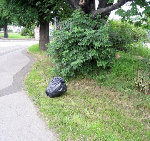 File:2009-06-27 Green Lane(004).jpg