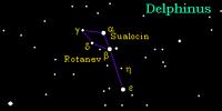 Constellation Delphinus