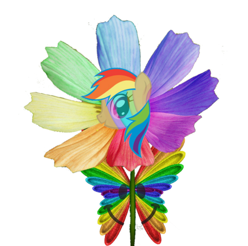 File:Happy rainbow butterfly pony flower by animat505-d4lxjub.png