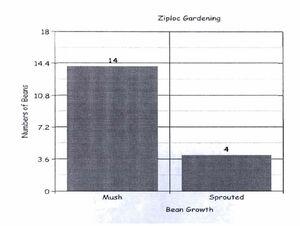 Mush Graph
