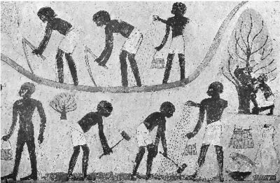 Ancient egyptian slaves2
