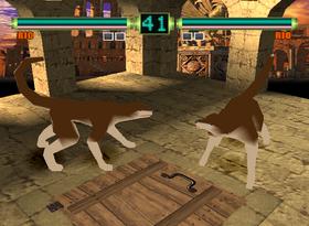 Rio-Dog