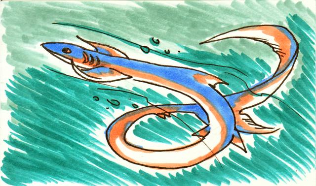 File:Asagi sketch card.png