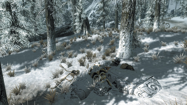 File:Yorgrim Forest Spider Trap.png