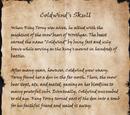 Coldwind's Skull (Book)