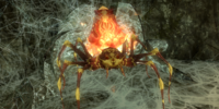Spiders (Dragonborn)