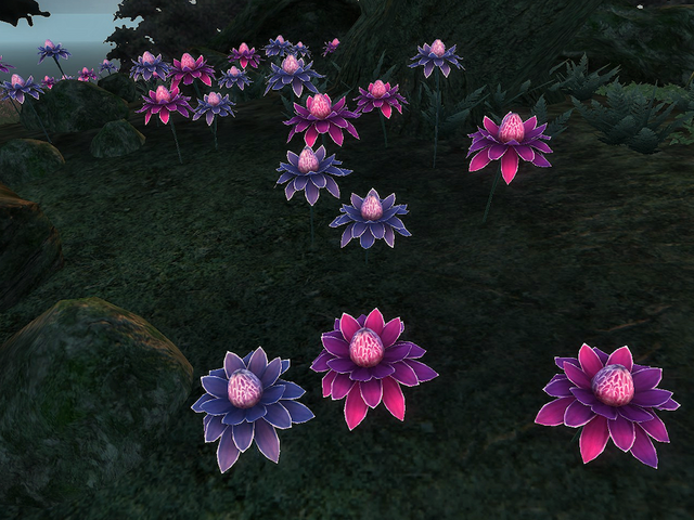 File:Mana Bloom.png