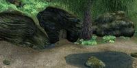 Swampy Cave