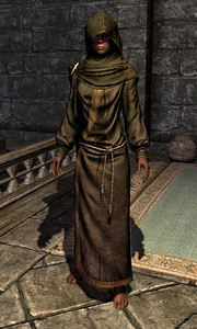 Hooded Green Robes 10CFEC