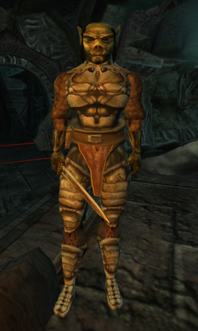 File:TES3 Morrowind - Character - Gnaw Tooth.png