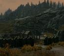 Halted Stream Camp