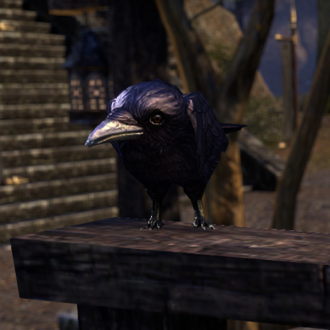 File:ESO Strange Crow.png
