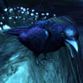 ESO Knave of Rooks.png