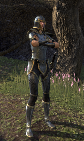 File:Thalmor Guard Instructor.png