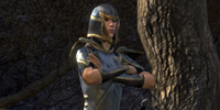 Thalmor Guard Instructor