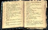 Master Illusion Text 2part1