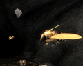 Bee and Beehive.png
