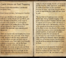 Guild Memo on Soul Trapping
