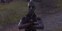 Riinsi Dreloth