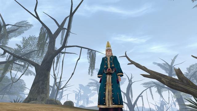 File:A Falling Wizard - Morrowind.png