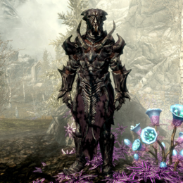 Falmer Hardened Armor