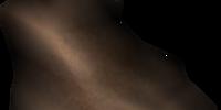 Scamp Skin (Morrowind)