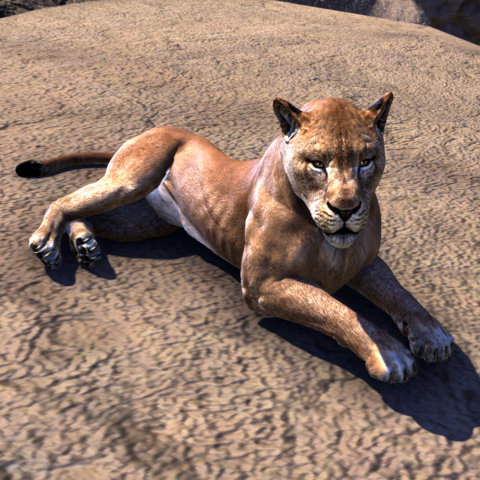 File:ESO Lioness.png