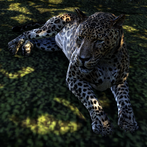 File:Purrs-In-Sun TESO.png