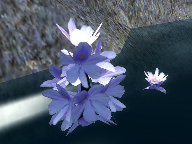 File:Water Hyacinth.png