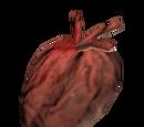 Heart of the Udyrfrykte