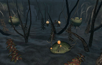 Addiction Inside Kelp Fen