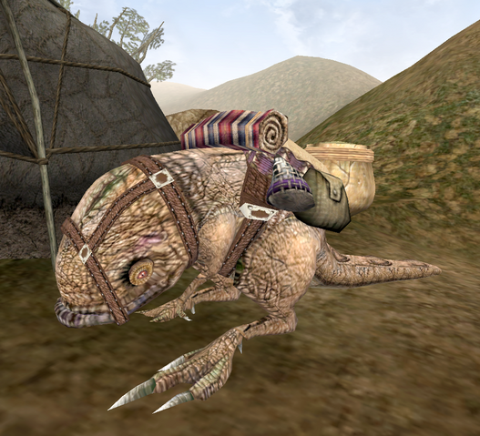 File:Pack Guar.png