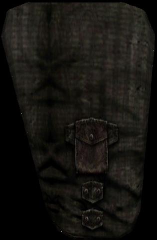 File:Common Pants BM Wool 2.png
