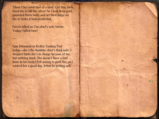 File:Bandit Thug's Journal.png