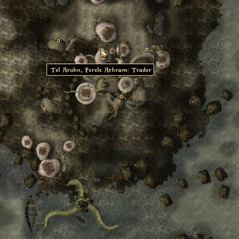 File:Tel Arhun Ferle Trader - Local Map - Morrowind.png