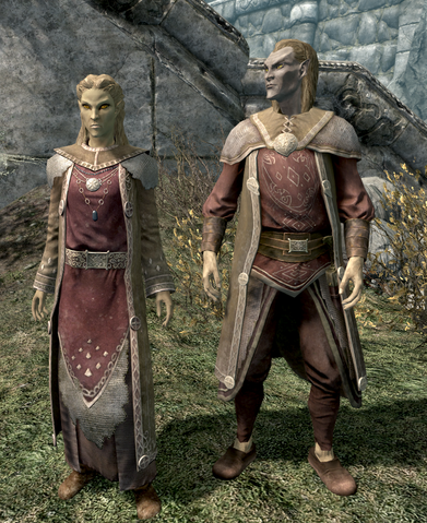 File:Altmer in Fine Raiment.png