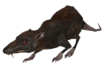 File:Rat MW.png