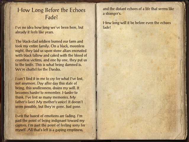 File:How Long Before the Echoes Fade.png