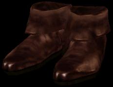 File:DoeskinShoes Ob.png