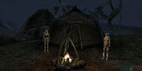 Shashmanu Camp