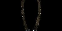 Shahvee's Amulet of Zenithar