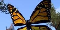 Butterfly (Online)