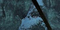 Riekelin (Dragonborn)