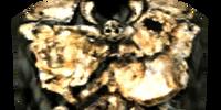 Nordic Trollbone Cuirass (Morrowind)