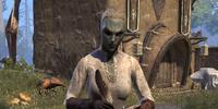 Overseer Shiralas
