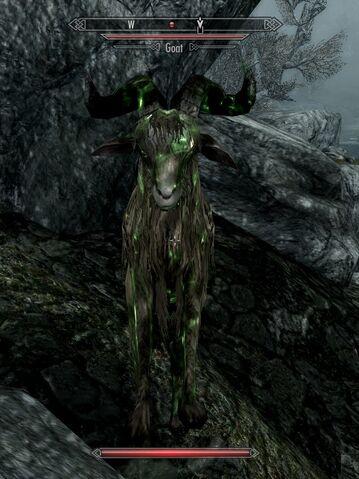 File:Necromantic goat.jpg